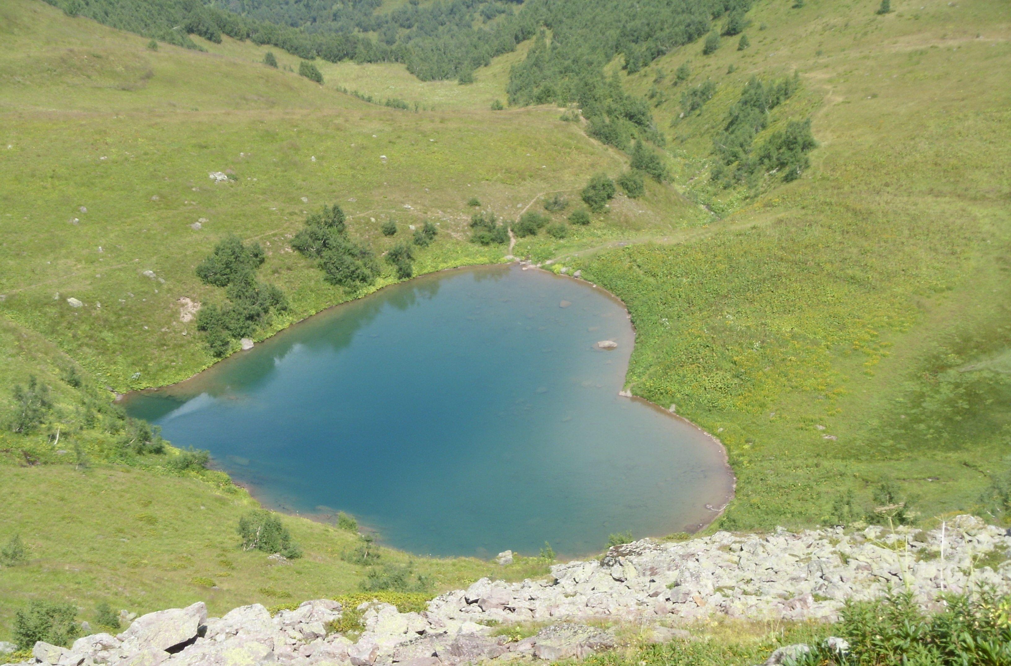 озеро дмитриевское вологодская область схема проезда